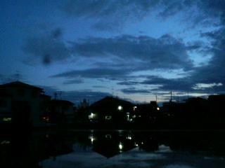 夜の田んぼ