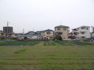 140420_tanbo