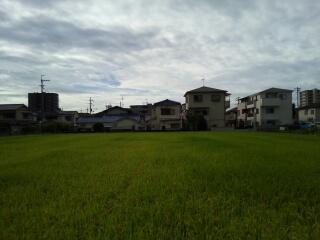 今朝の空160925